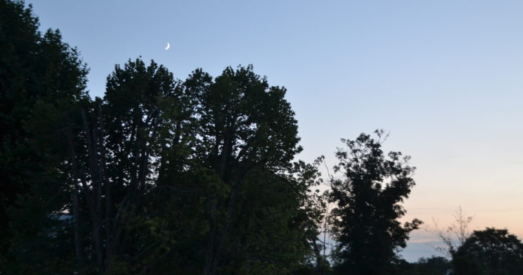 Pratique les yeux fermés : Yoga de Nouvelle Lune